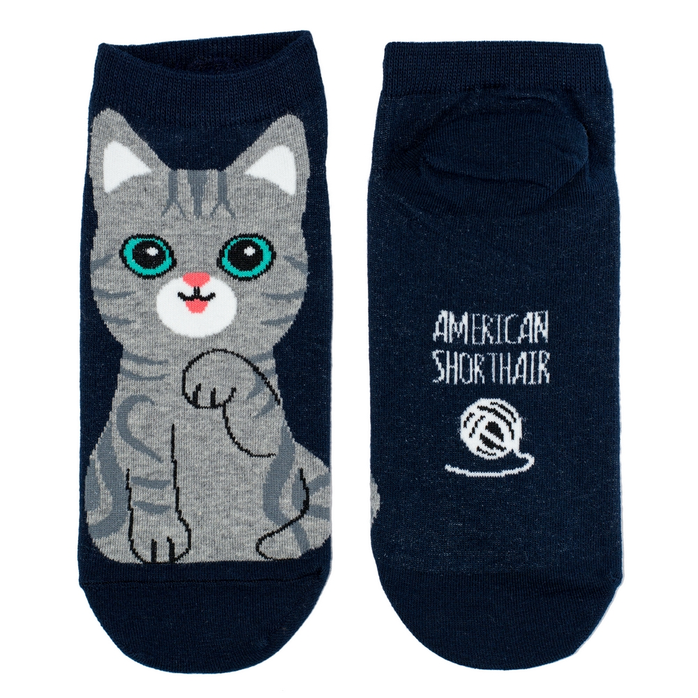 Socks Ankle American Shorthair Cat Made With Cotton & Spandex by JOE COOL
