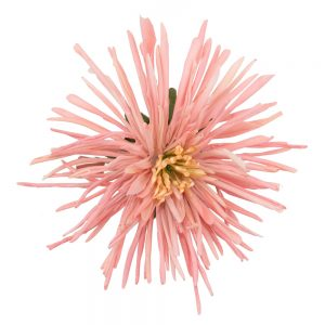 Brooch Chrysanthemum Made With Polyester by JOE COOL